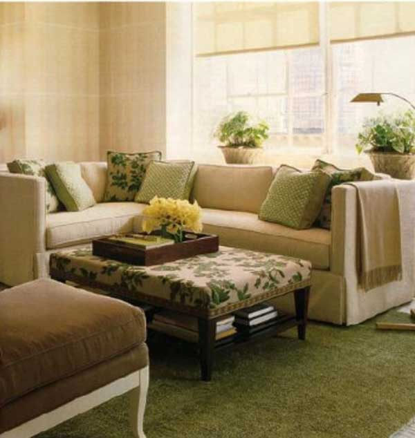 Green Home Design Ideas:  Green Carpet For Green Living Room Concept