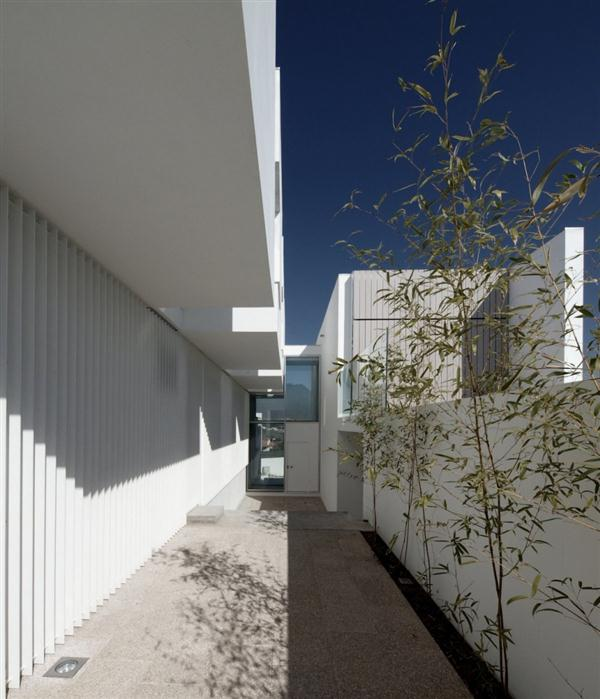 Open Area White Concrete House