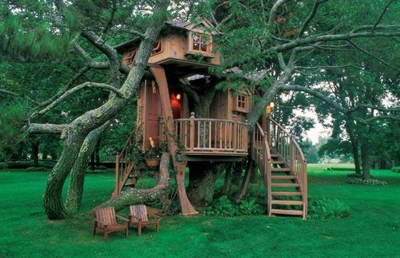 Kids Tree House Plans Designs Free And Design Ideas