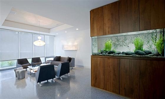 Home Aquarium Ideas